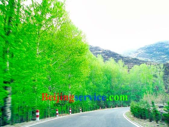 Photo of Baihua Mountain Beijing 30