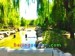 Photo of Botanical Garden Beijing 1-9