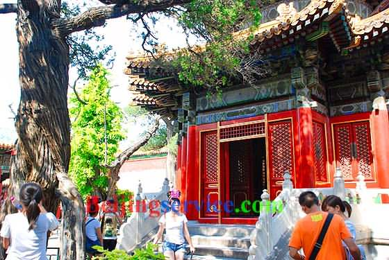 Photo of Forbidden City Beijing 53
