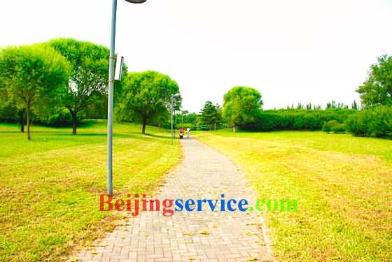 Photo of Olympic Forest Park Beijing 12