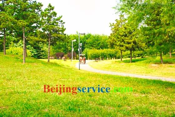 Photo of Olympic Forest Park Beijing 14