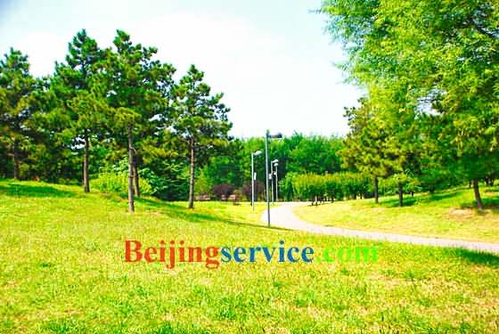 Photo of Olympic Forest Park Beijing 21