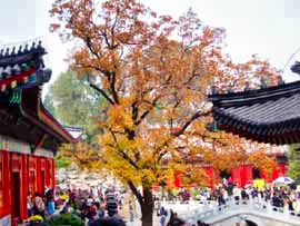 Fragrant Hill in Autumn